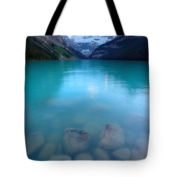 Tote Bag featuring the photograph Louis With An E  by David Andersen