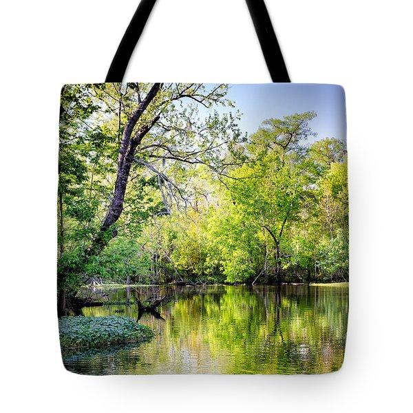 Louisiana Bayou Tote Bag by Kathleen K Parker