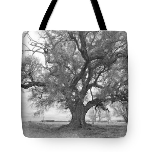 Louisiana Dreamin' Monochrome Tote Bag by Steve Harrington