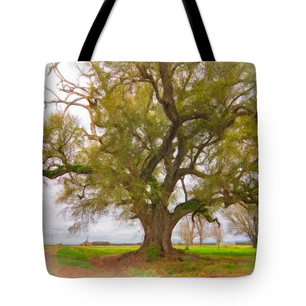 Louisiana Dreamin' Tote Bag by Steve Harrington