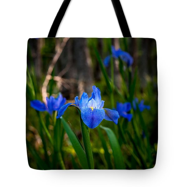 Louisiana Iris Field Tote Bag by Andy Crawford
