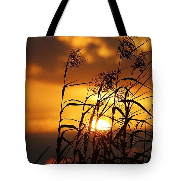 Tote Bag featuring the photograph Louisiana Marsh Sunset by Luana K Perez