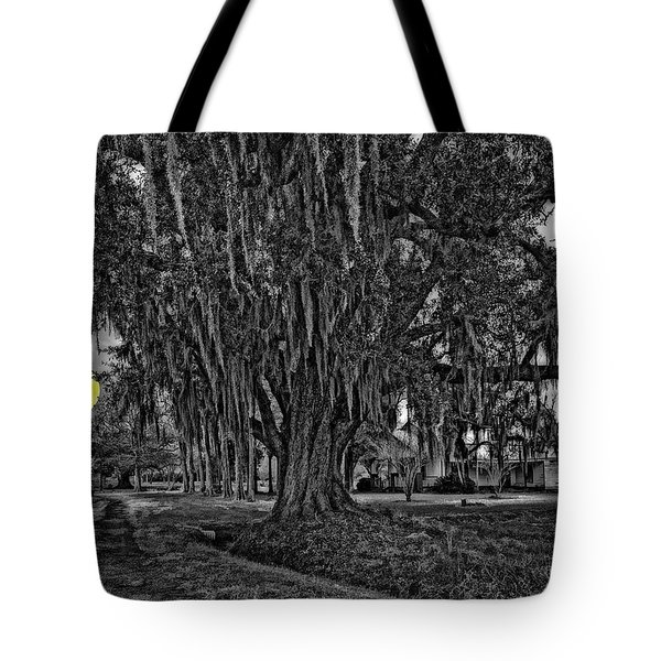 Louisiana Moon Rising Monochrome 2 Tote Bag by Steve Harrington