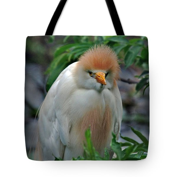 Lovable Little Fuzzball Tote Bag