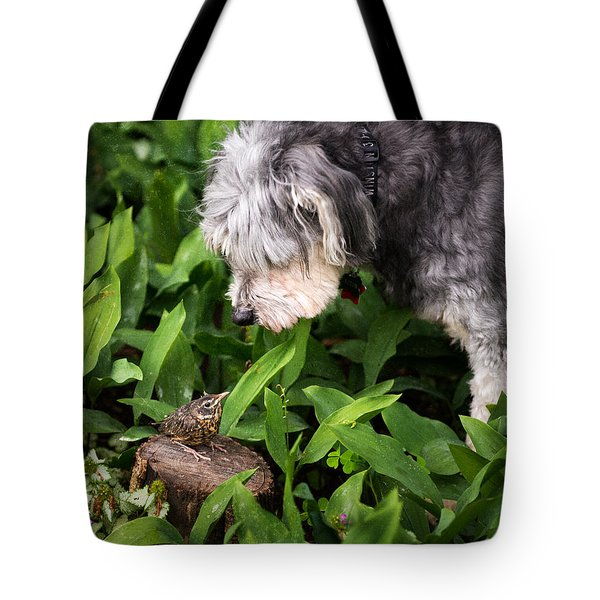 Love At First Sight Tote Bag by William Beuther