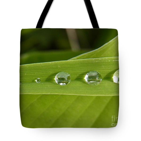 Love Gathering Tote Bag by Agnieszka Ledwon