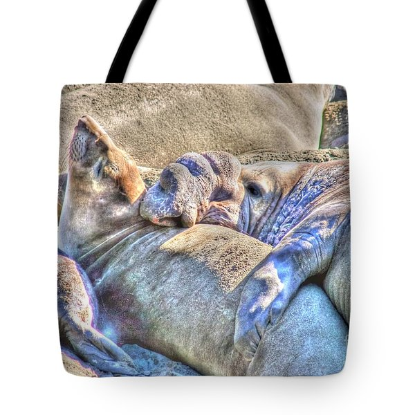 Love Hug - San Simeon California Tote Bag