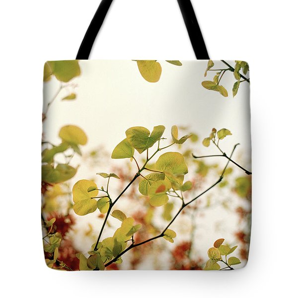 Tote Bag featuring the photograph Love Leaf by Rebecca Harman