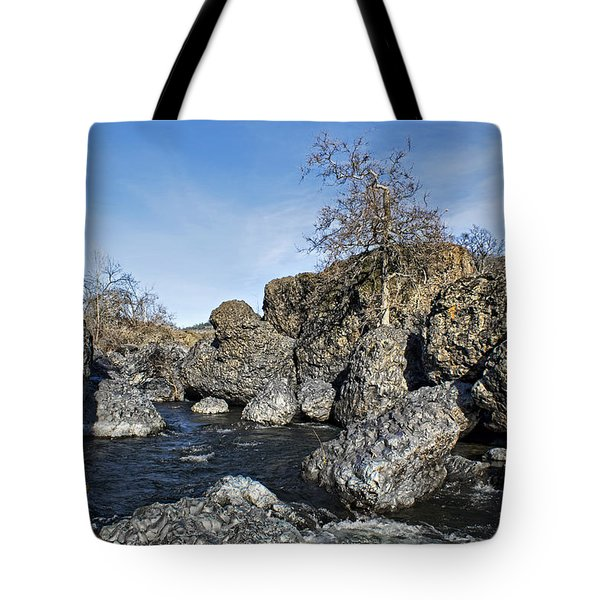 Lovejoy Basalt Formations  Tote Bag