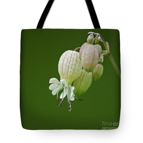Lovely Bubbles... Tote Bag by Nina Stavlund