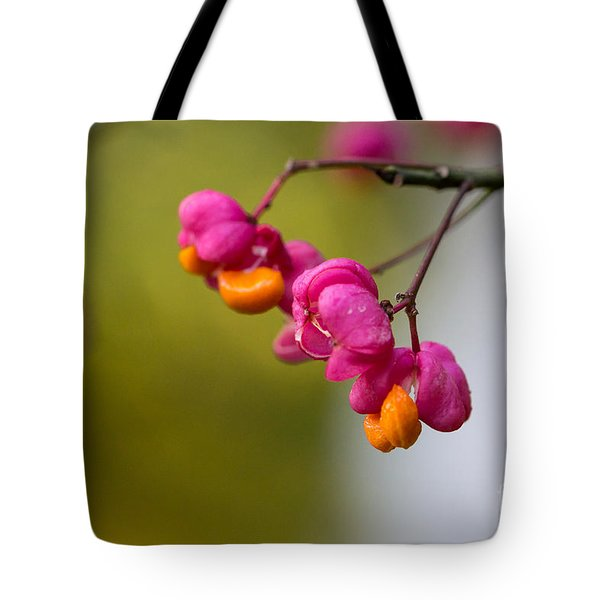 Lovely Colors - European Spindle Flower Seeds Tote Bag