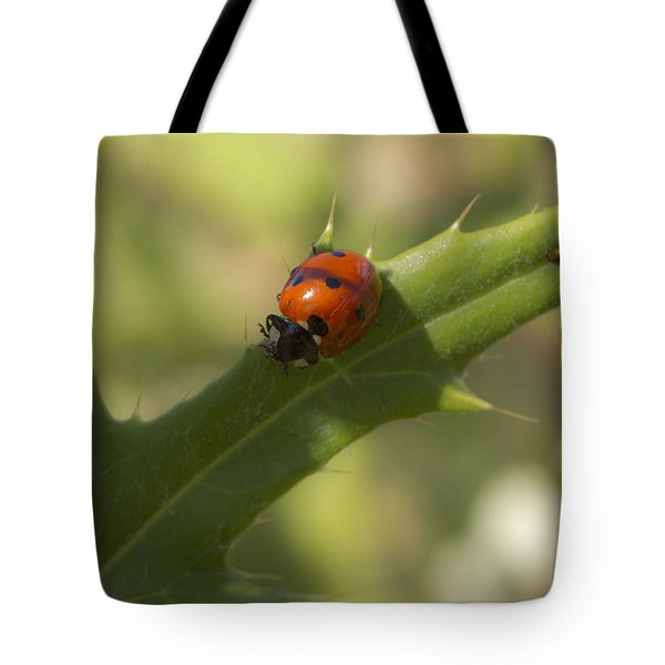 Lovely Lady Bug Tote Bag by Shelly Gunderson
