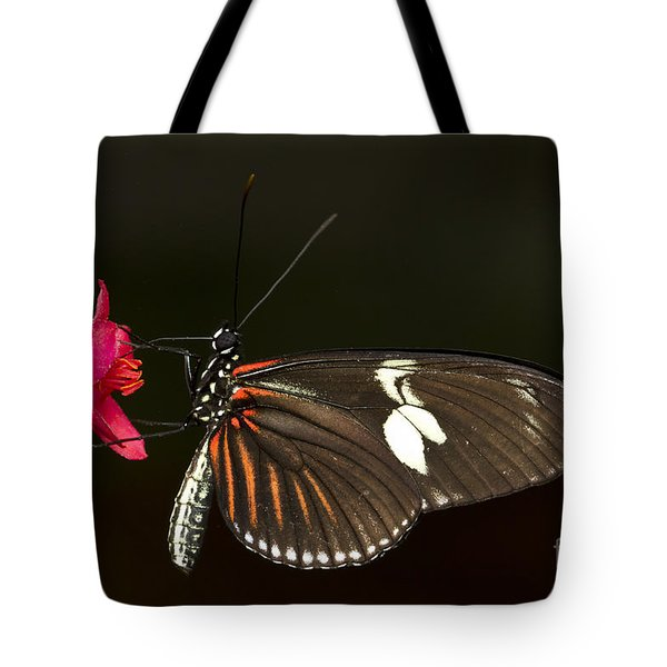 Lovely Longwing Tote Bag by Bryan Keil