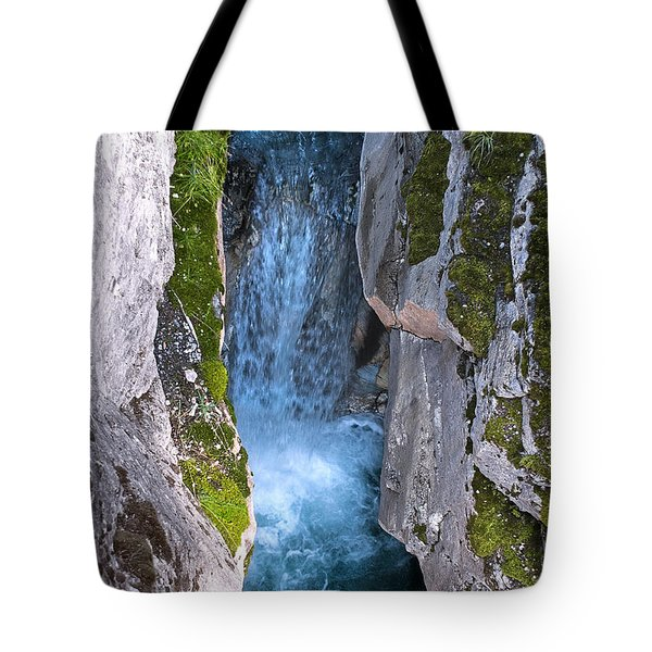 Love's Endurance Tote Bag by Sandi Mikuse