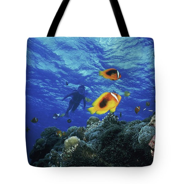 Low Angle View Of Fish Undersea Tote Bag