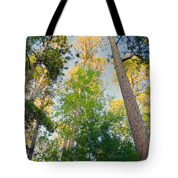 Low Angle View Of Red Pine Trees Tote Bag