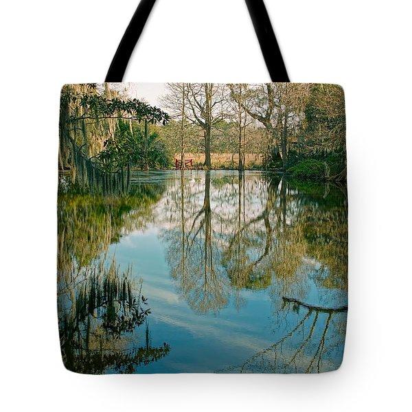 Low Country Swamp Tote Bag