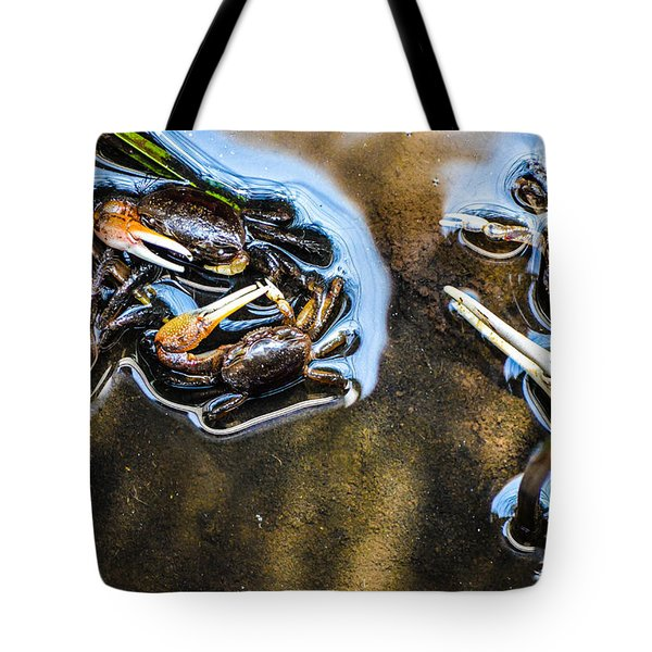 Low Tide Breakfast  Tote Bag by Mary Ward