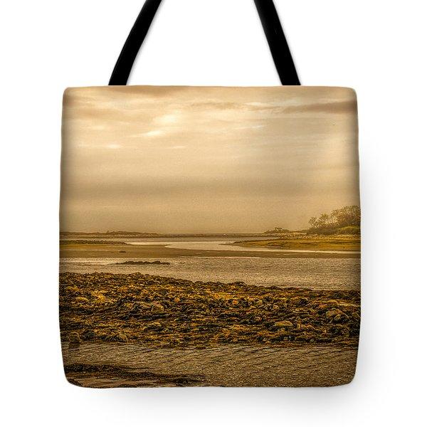 Low Tide Cape Porpoise Maine Tote Bag by Bob Orsillo