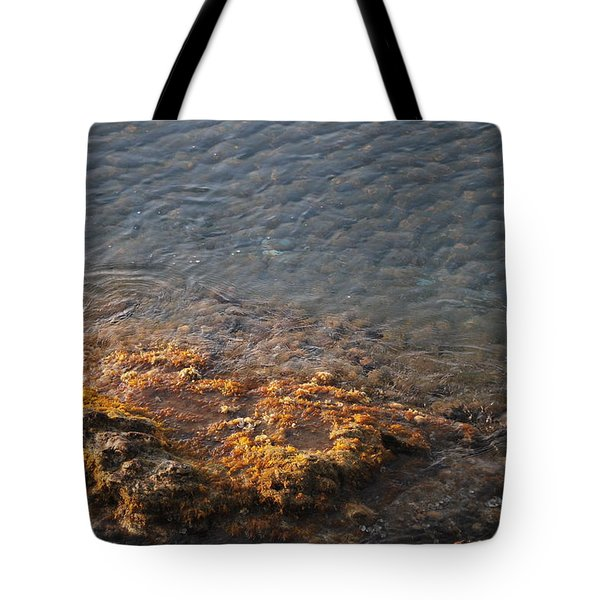 Tote Bag featuring the photograph Low Tide by George Katechis