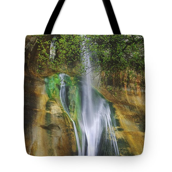 Tote Bag featuring the photograph Lower Calf Creek Falls Escalante Grand Staircase National Monument Utah by Dave Welling
