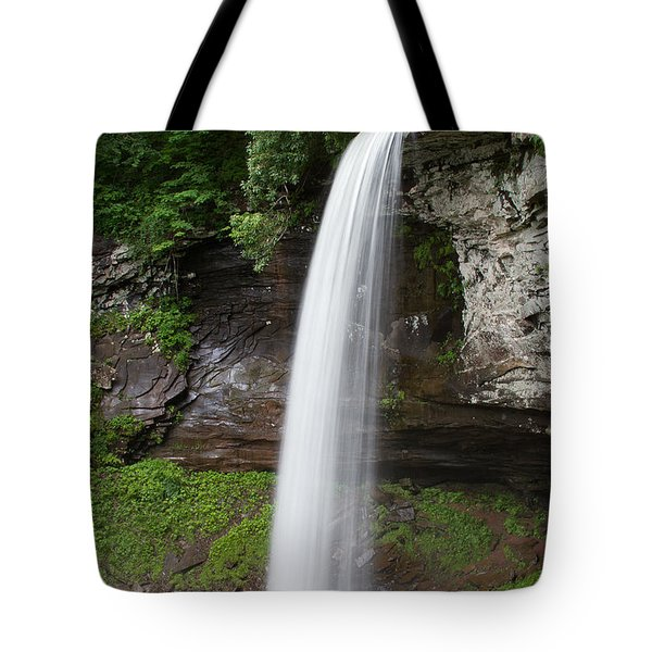 Lower Fall At Hills Creek Tote Bag