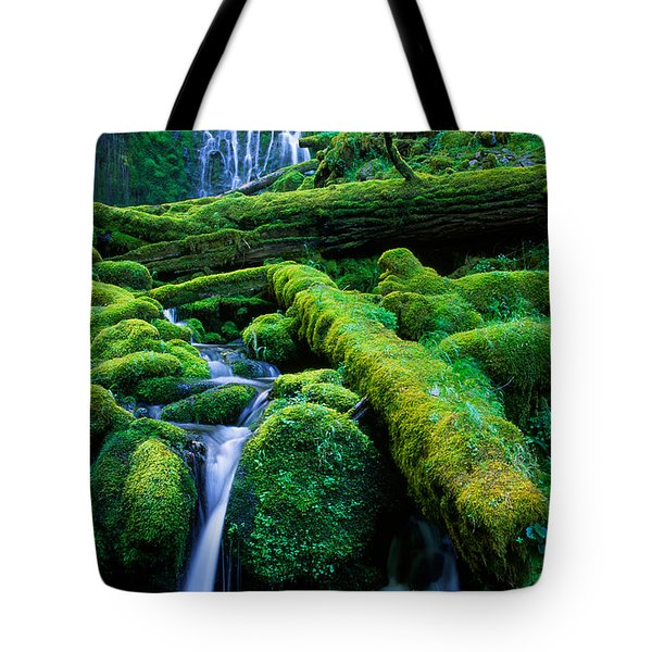 Lower Proxy Falls Tote Bag by Inge Johnsson
