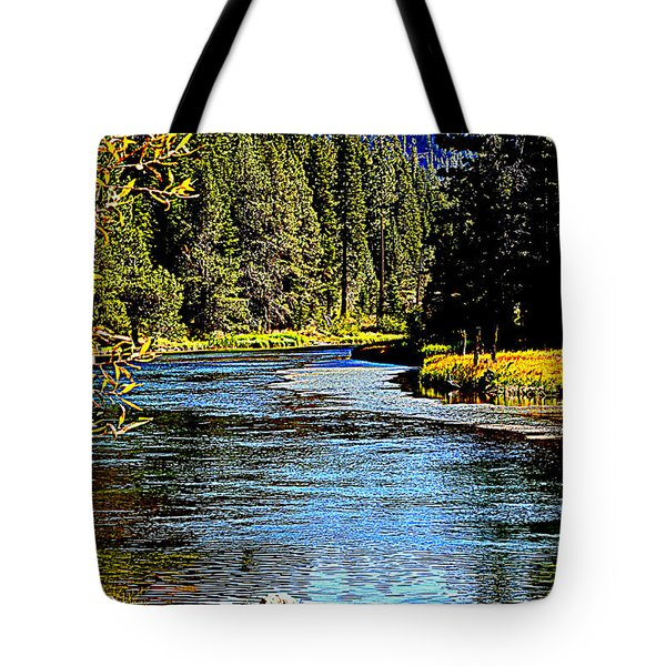 Lower Truckee River Tote Bag