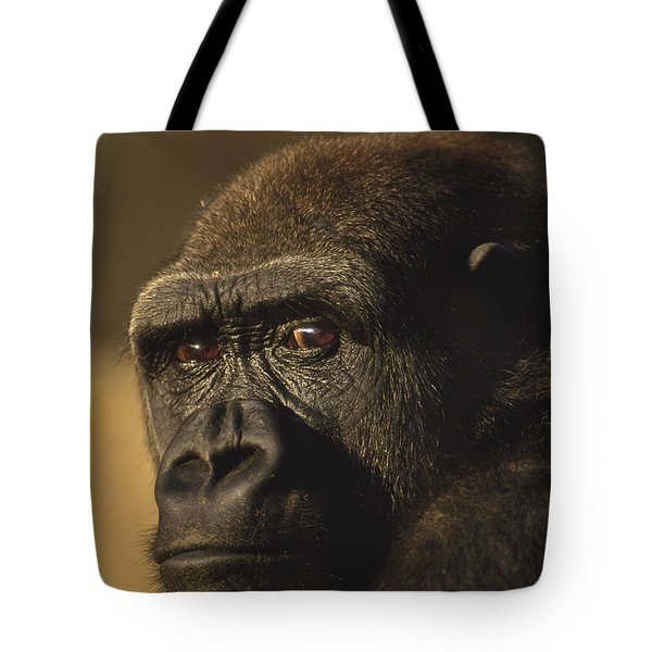 Lowland Gorilla Tote Bag by Frans Lanting MINT Images