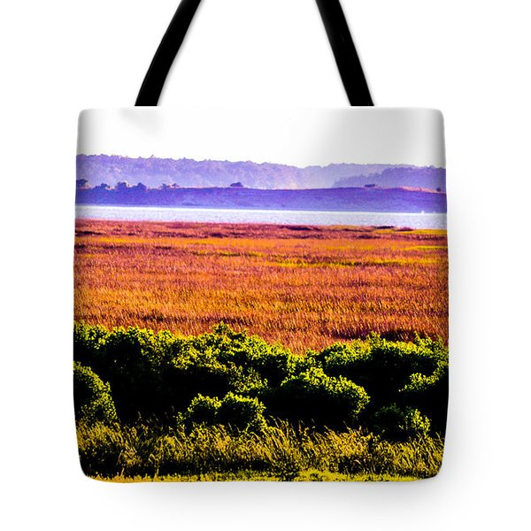 Lowland Light  Tote Bag by Mary Ward