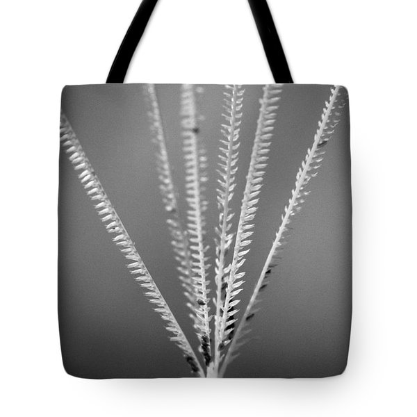 Loxahatchee Grass Tote Bag by Bradley R Youngberg