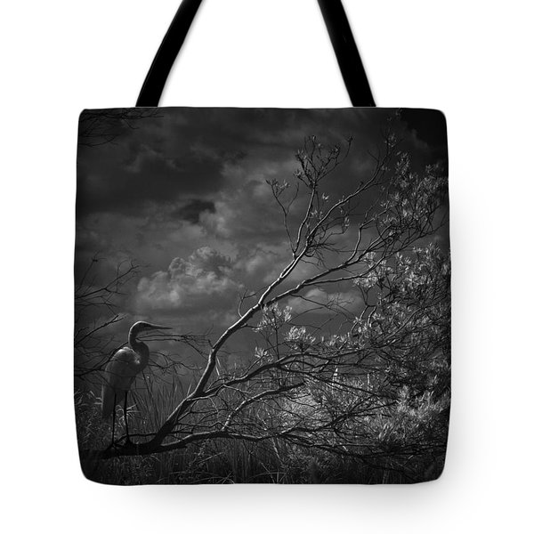 Loxahatchee Heron At Sunset Tote Bag