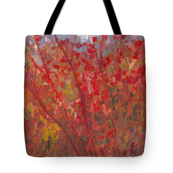 Loyalist Parkway Colour Tote Bag by David Dossett