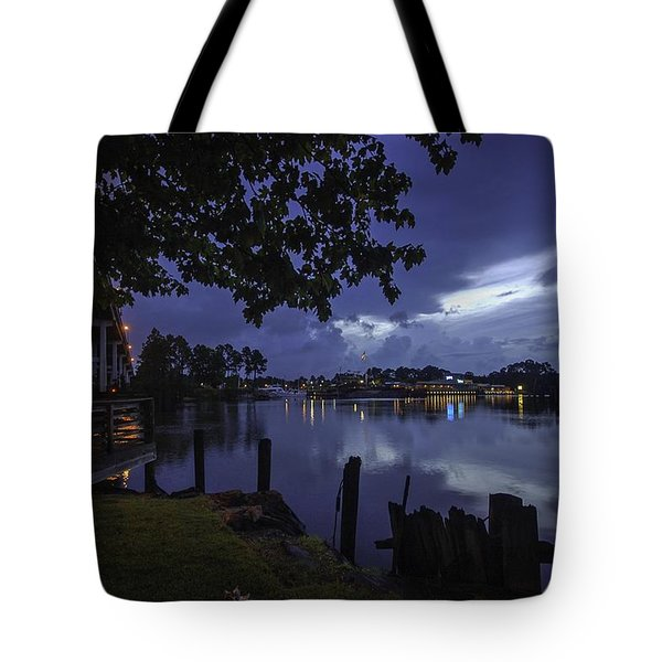 Tote Bag featuring the digital art Lu Lu S Before The Storm by Michael Thomas