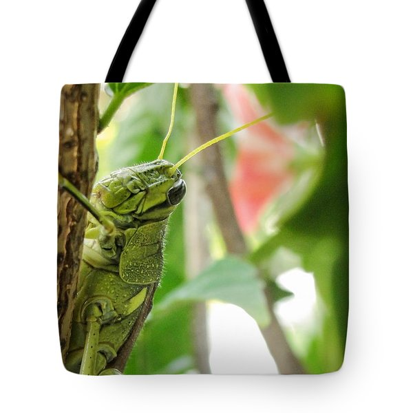 Lubber Grasshopper Tote Bag by TK Goforth
