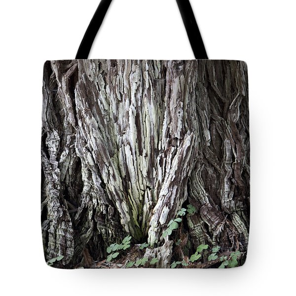 Lucky Tree Tote Bag by Amanda Barcon