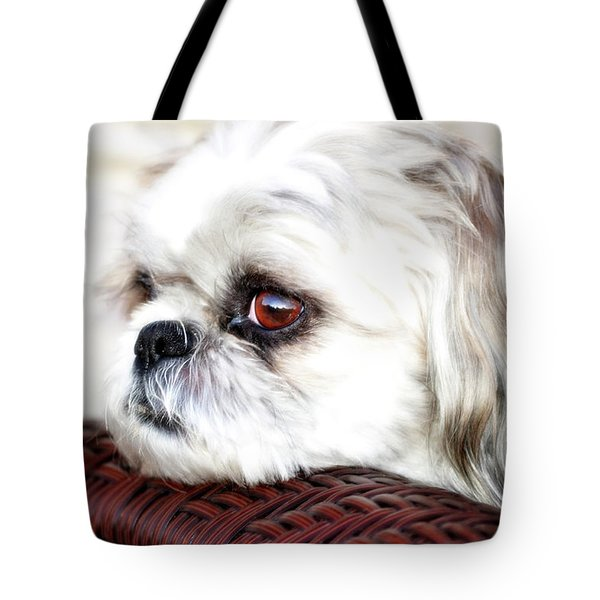 Lucy Tote Bag by Molly McPherson