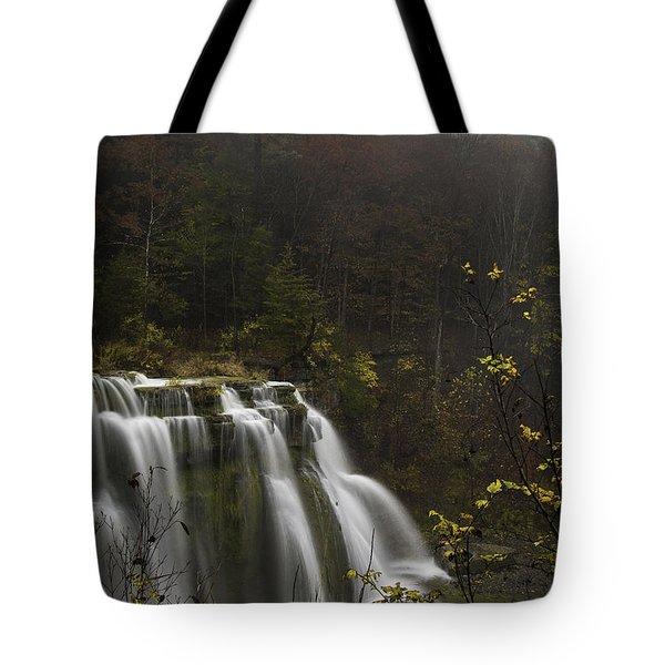Ludlowville Falls In Autumn I Tote Bag