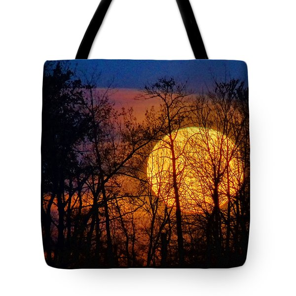 Luminescence Tote Bag by Bill Pevlor