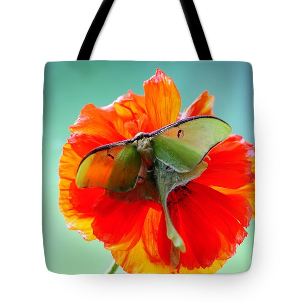 Luna Moth On Poppy Aqua Back Ground Tote Bag