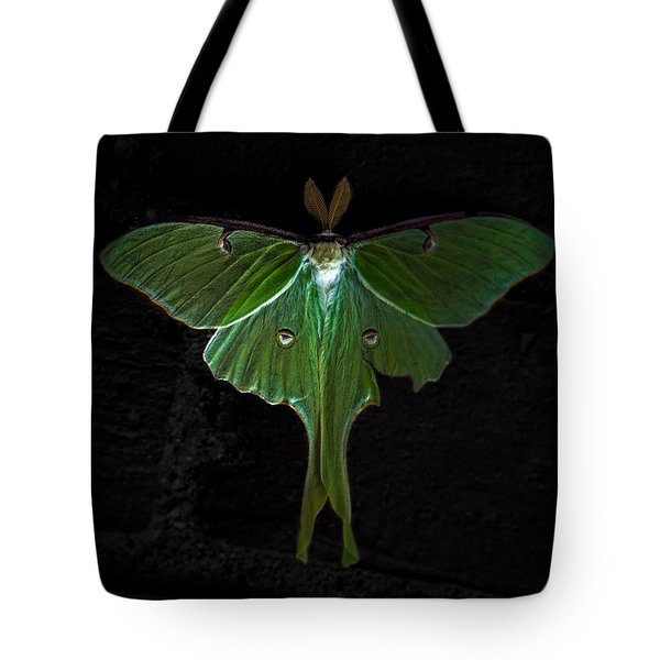 Lunar Moth Tote Bag by Bob Orsillo