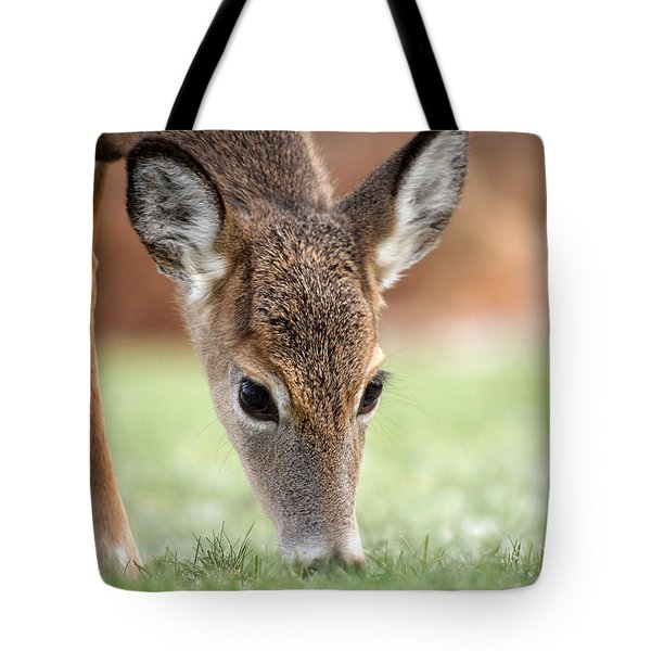 Lunch Time Tote Bag by Karol Livote