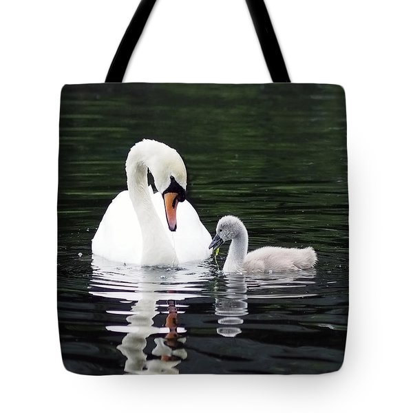 Lunchtime For Swan And Cygnet Tote Bag