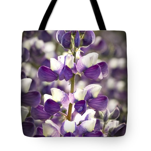 Tote Bag featuring the photograph Lupine Wildflowers by Sonya Lang
