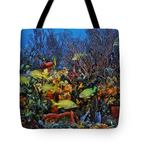 Lynns Reef On A Perfect Day Tote Bag