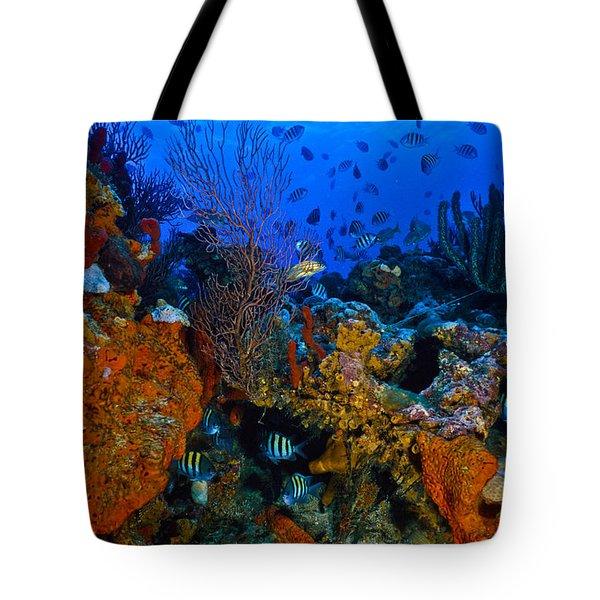 Lynns Reef Tote Bag