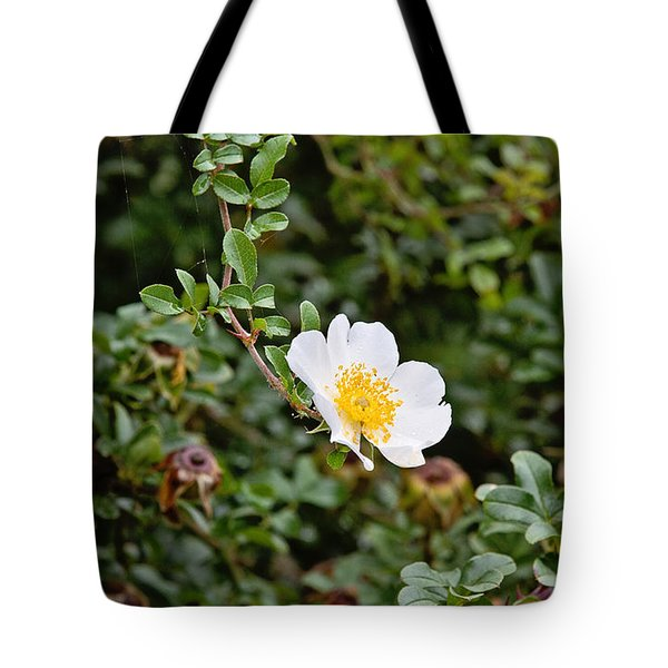 Macartney Rose Tote Bag by Scott Pellegrin
