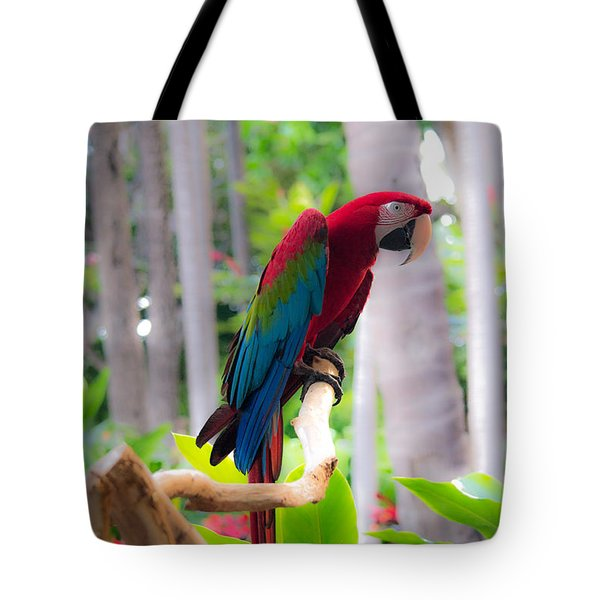 Tote Bag featuring the photograph Macaw by Angela DeFrias