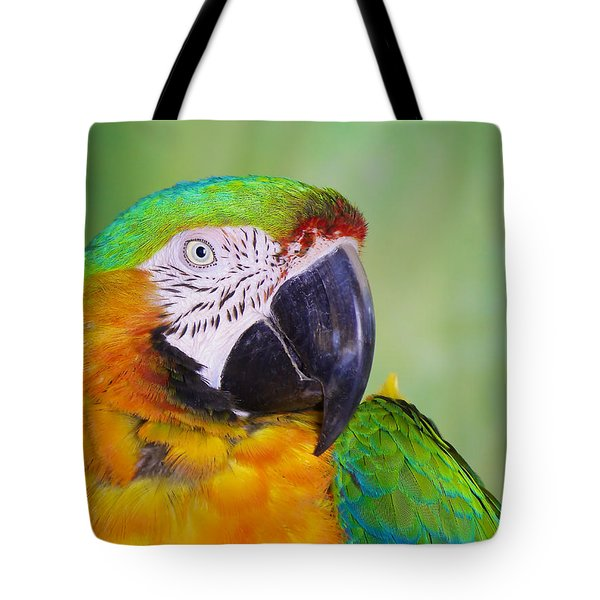 Tote Bag featuring the photograph Macaw - Ara by Nature and Wildlife Photography