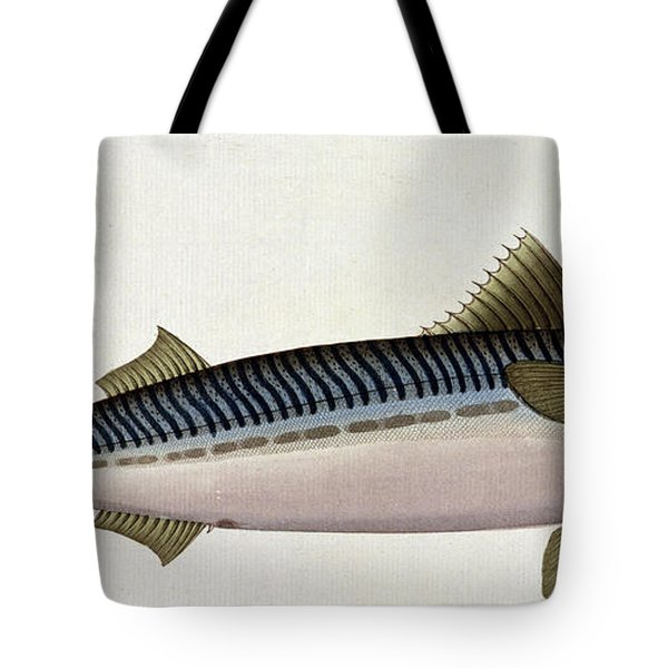 Mackerel Tote Bag by Andreas Ludwig Kruger